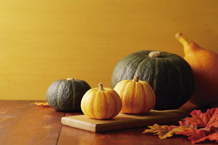Al escuchar la palabra zapallo, calabaza, kabocha, pumpkin, ahuyama o auyama, muchos se imaginan la forma y el color peculiar del fruto; otros la variedad de las exquisitas comidas caseras; la gran mayoría los usos como decoración de las fiestas de Halloween.